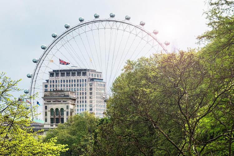Kunstfotografier The Millennium Wheel View