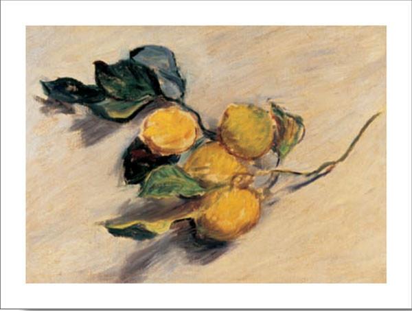 Reproducción de arte  Branch from a Lemon Tree