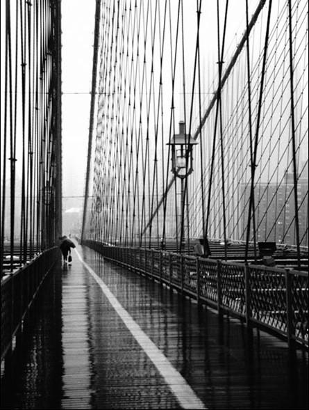 Lámina Brooklyn Bridge on rainning day