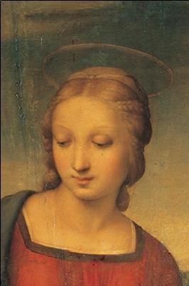 Reproducción de arte  Raphael Sanzio - Madonna of the Goldfinch - Madonna del Cardellino