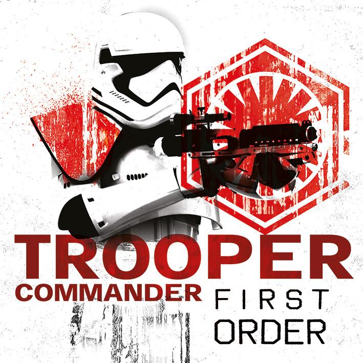 Leinwand Poster, Bilder Star Wars: Die letzten Jedi - Tooper ...