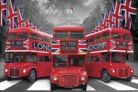 London - palace buses  - плакат (poster)
