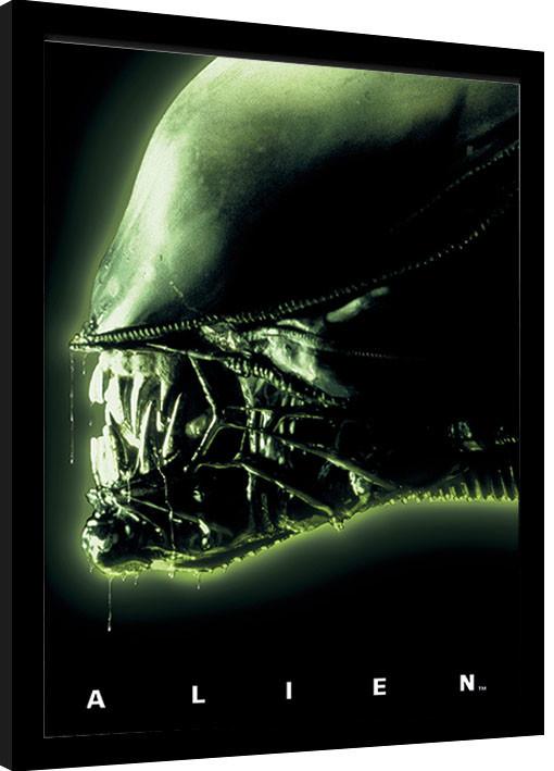 Poster enmarcado Aliens - Head Green