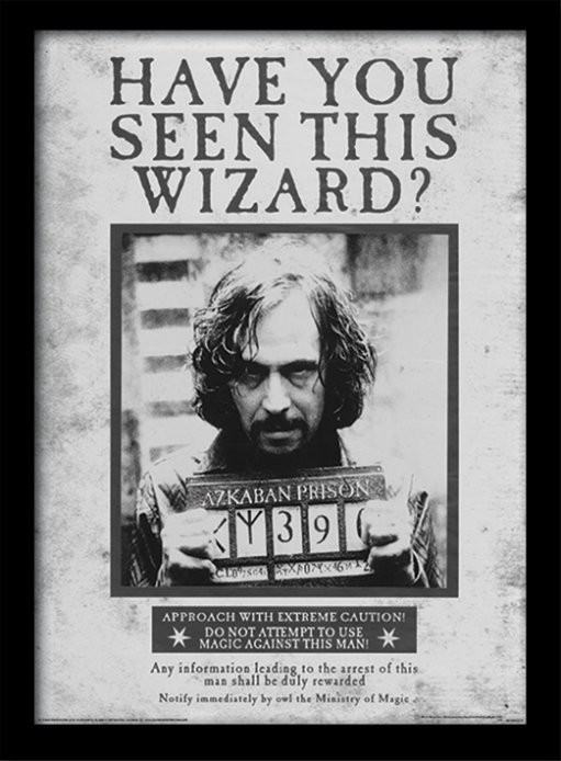 Harry Potter - Sirius Wanted Poster enmarcado