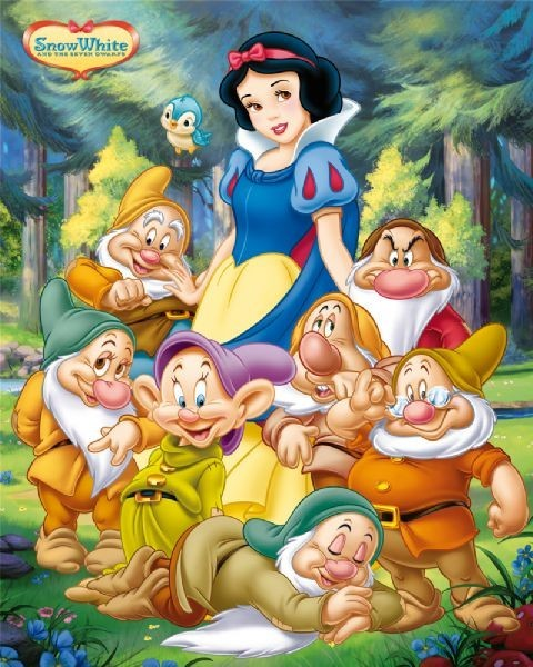 Snow White And The 7 Dwarfs Vintage T Shirt