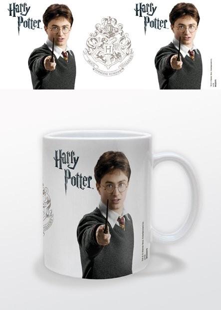 Harry Potter muggar