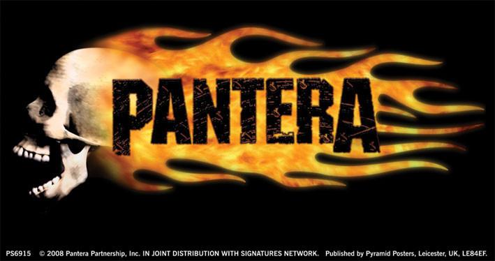 Naklejka PANTERA - flaming skull