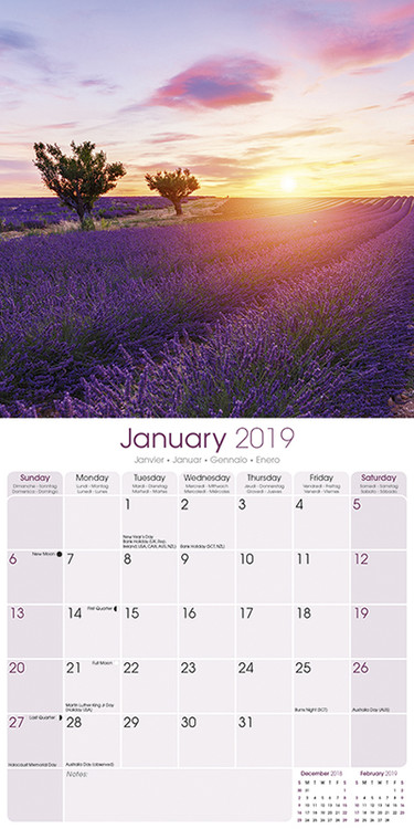 Lavender naptár 2019