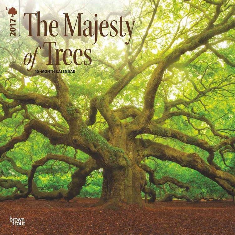 The Majesty of Trees naptár 2017