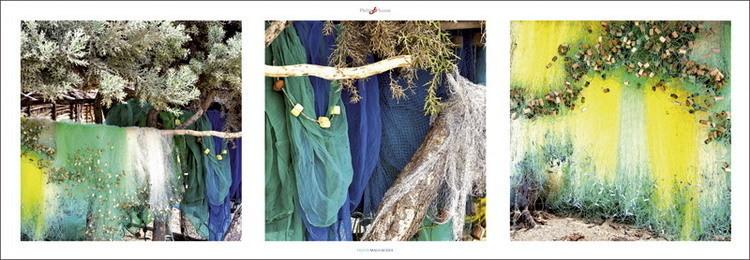 Filets malgaches, Obrazová reprodukcia