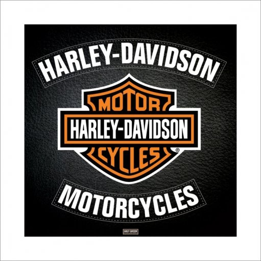 Reprodukce Harley Davidson - leather