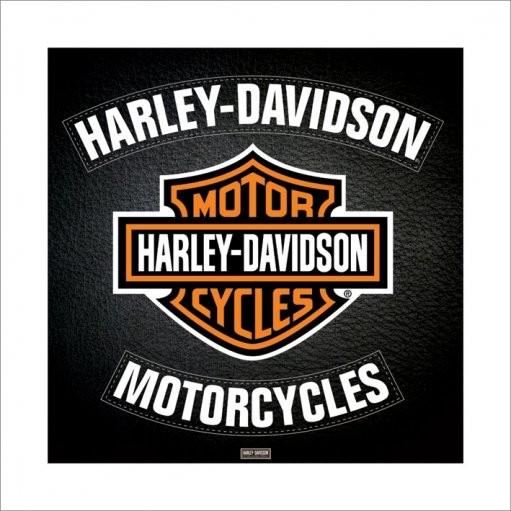 Harley Davidson - leather , Obrazová reprodukcia