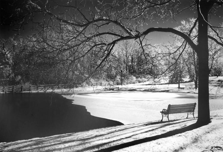 Reprodukce Heritage Pond in Winter