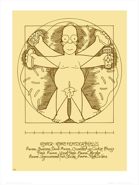 Homer Virtua Man , Obrazová reprodukcia
