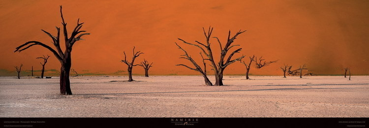 Namibie, Obrazová reprodukcia