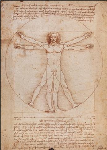 Reprodukce Vitruvius - Proporce lidské postavy