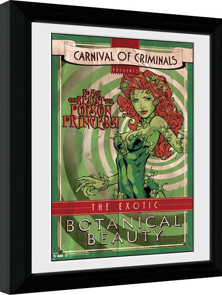 Zarámovaný plagát Batman Comic - Circus Poison Ivy