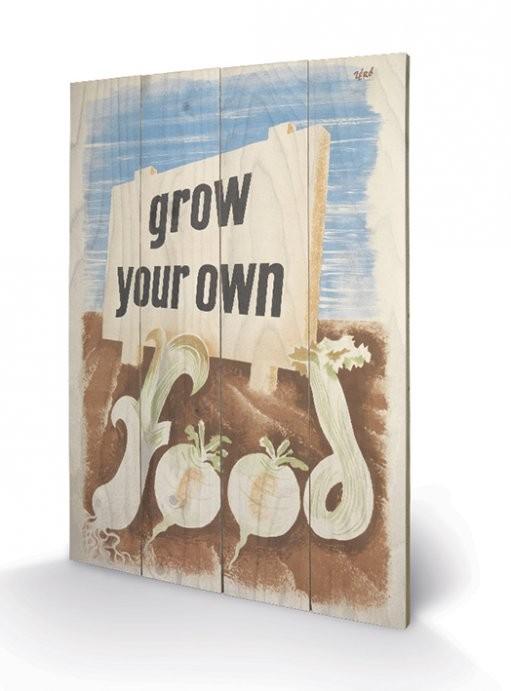 Obraz na dreve IWM - grow your own food