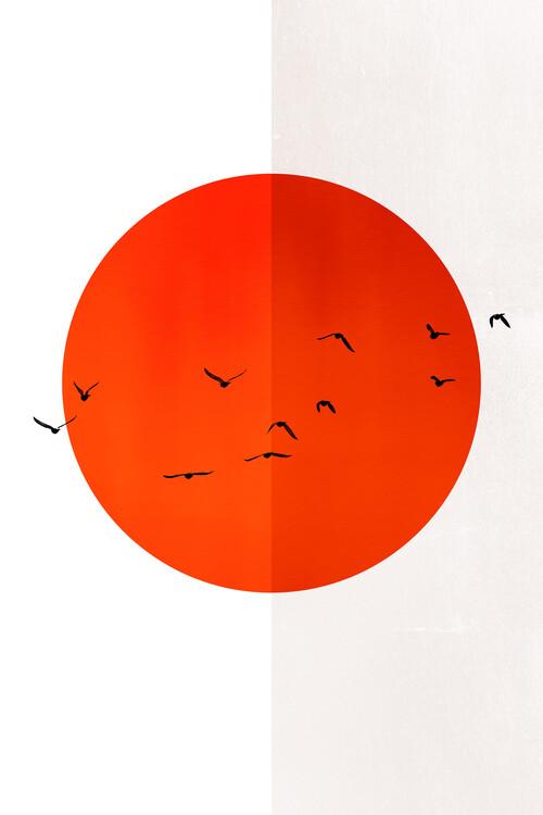 Obraz na plátně 13 Seagulls In The Sun