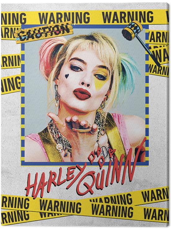 Obraz na plátně Birds Of Prey: Podivuhodná proměna Harley Quinn - Harley Quinn Warning