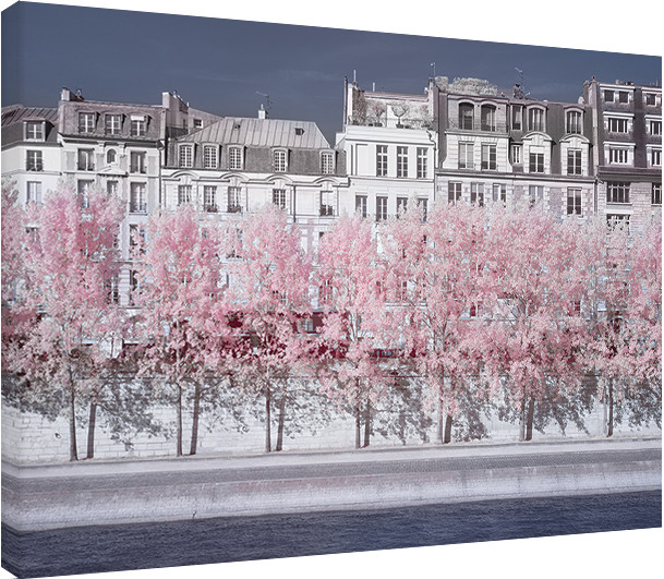 Obraz na plátně David Clapp - River Seine Infrared, Paris