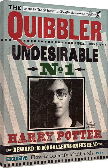 Obraz na plátně Harry Potter - Quibbler