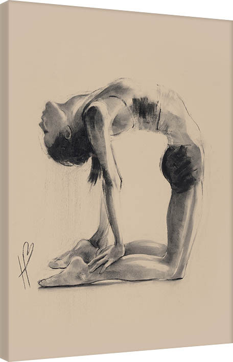 Obraz na plátně Hazel Bowman - Camel Pose