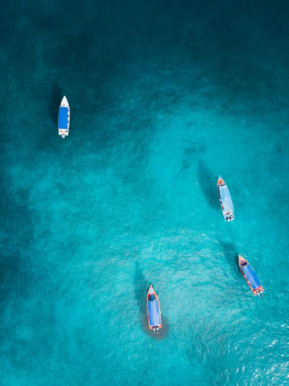 Obraz na plátně Into the Blue