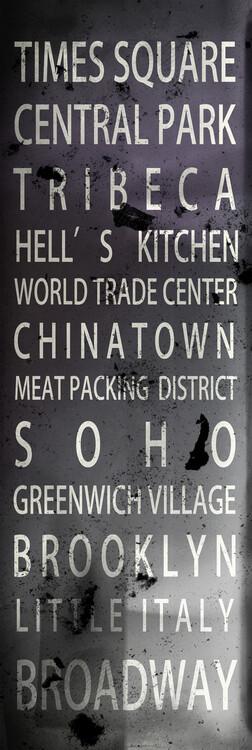 Obraz na plátně New York Districts