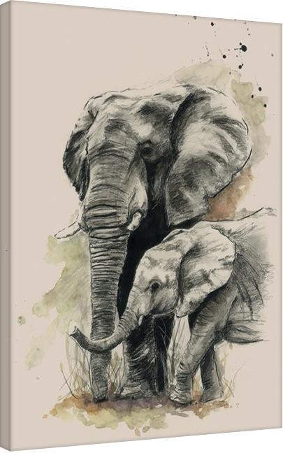 Obraz na plátně Sarah Stokes - Proud