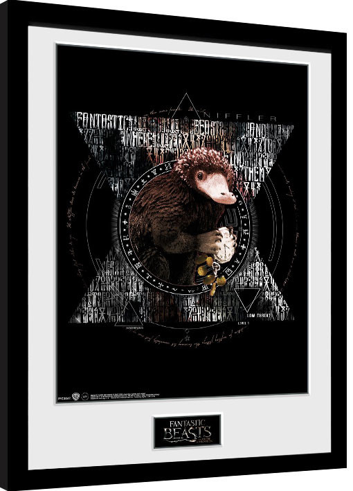 Fantastická zvířata - Niffler Circle zarámovaný plakát