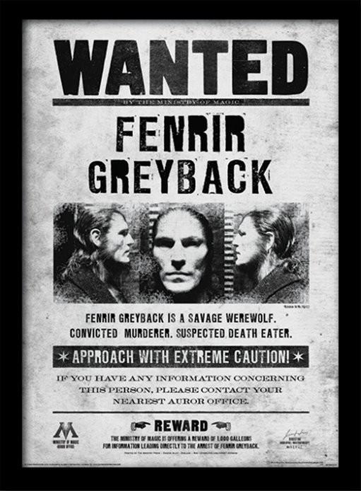 Harry Potter - Fenrir Wanted zarámovaný plakát