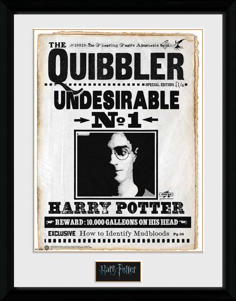 Harry Potter - Quibler zarámovaný plakát