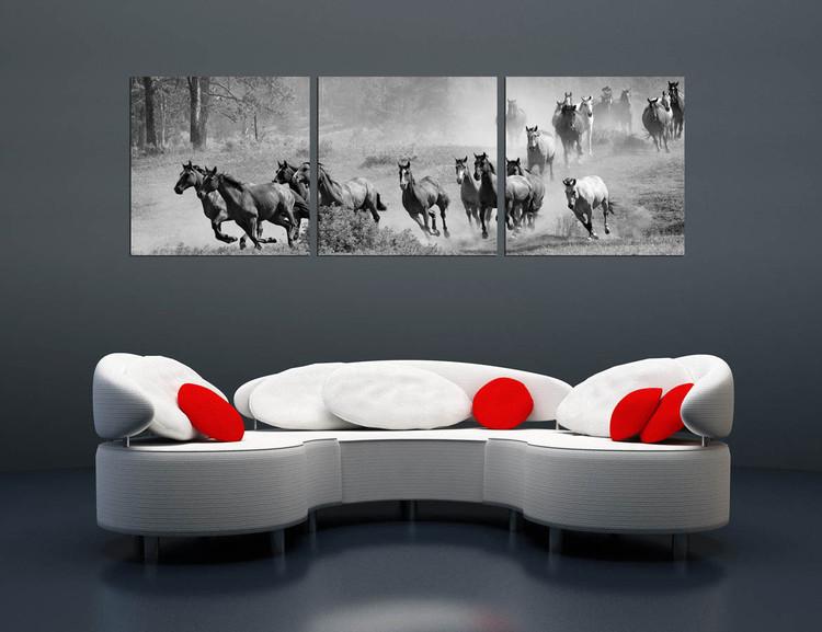 Obraz  Horses - Running Herd of Horse