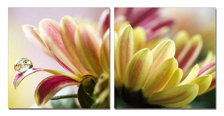 Obraz Kapka na květu