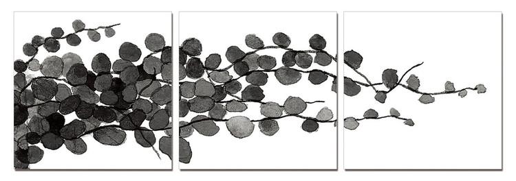 Obraz Moderní design - mladé větve (B&W)