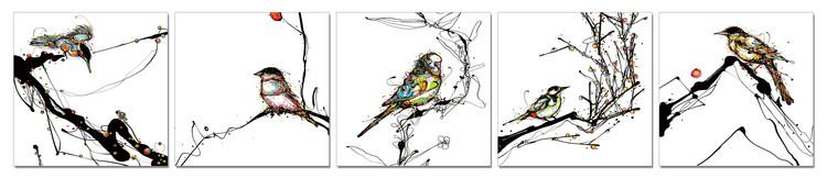 Obraz Ptáčci