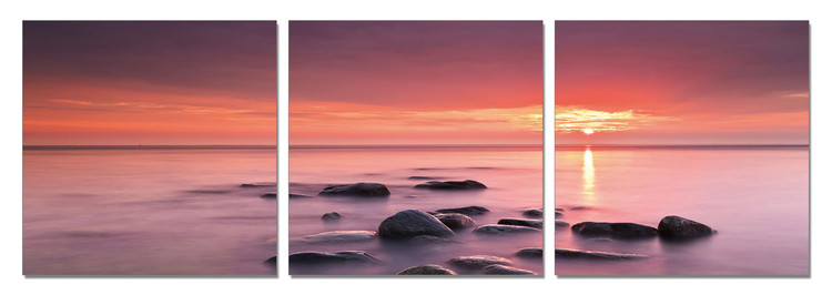 Obraz Růžový sen - západ slunce