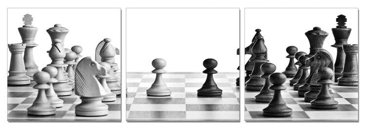 Obraz Šachy - první tahy (B&W)