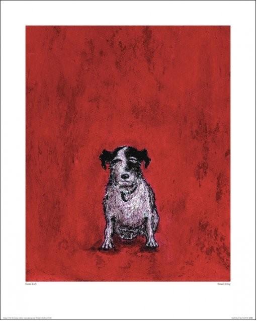 Sam Toft - Small Dog Obrazová reprodukcia