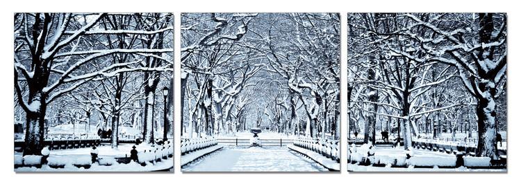 Obraz Zasněžený park
