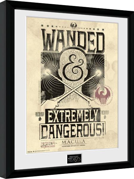 Oprawiony plakat Fantastyczne zwierzęta i jak je znaleźć - Wanded
