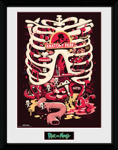 Zarámovaný plakát Rick and Morty - Anatomy Park