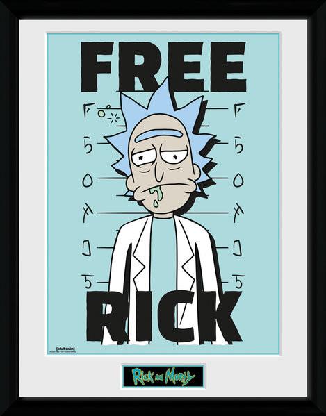 Zarámovaný plakát Rick and Morty - Free Rick