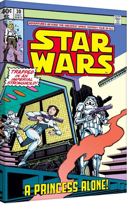 Star Wars - A Princess Alone På lærred