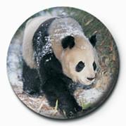 PANDA Insignă