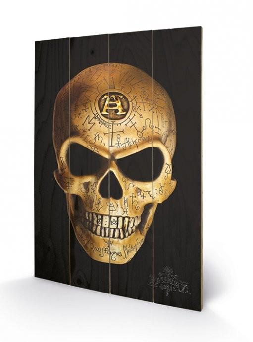 ALCHEMY - omega skull Panneau en bois