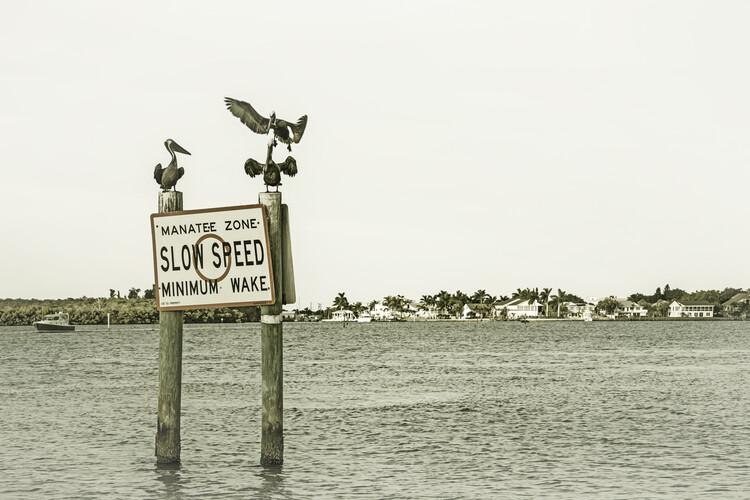 Cuadros en Lienzo Coastal View from Fort Myers Beach | Vintage