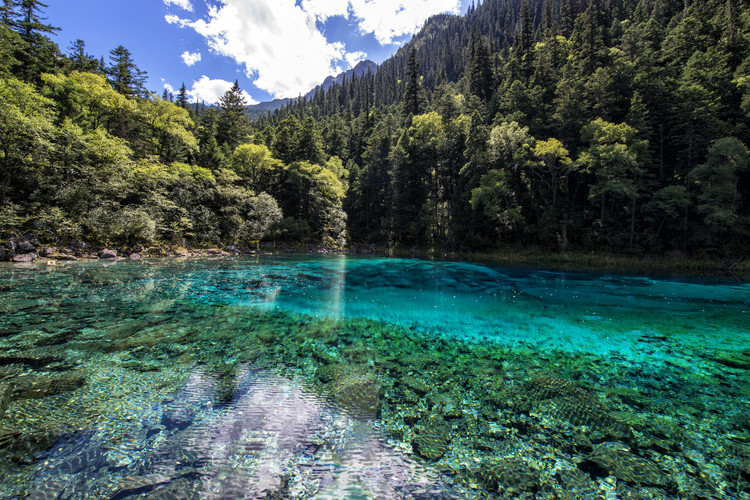 Cuadros en Lienzo China 10MKm2 Collection - Beauty of Jiuzhaigou