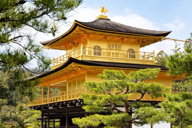Cuadros en Lienzo Kinkaku-Ji Golden Temple II